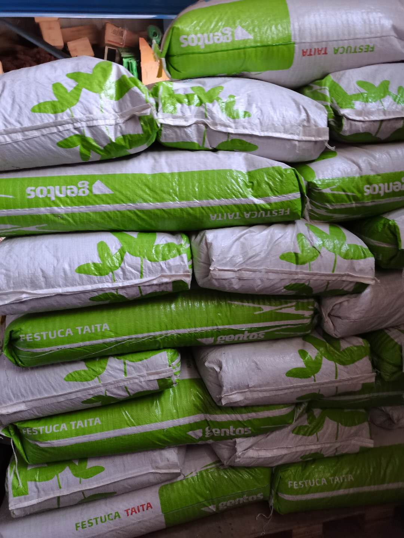 暖季草,春播亚博yabo网页版种子,狗牙根脱壳种子,脱壳百慕大种子