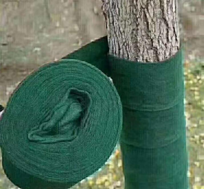 天冷了别忘了给大树穿上保暖衣……